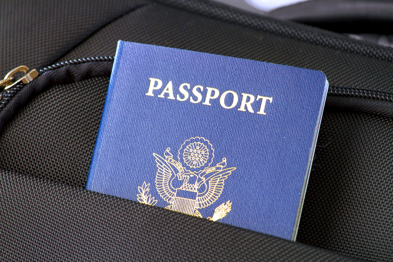 passport - visa en ligne pour Dubaï